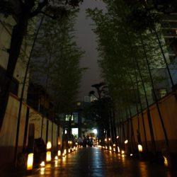 「十夜一夜 Tenya-wanya」sp-event